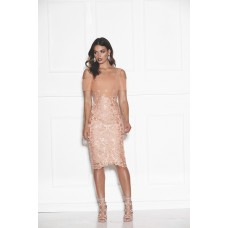 Grace & Hart Breathless Love Midi Dress Champagne