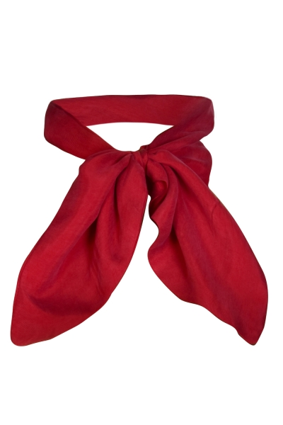 Sarvin Cleo Red Neck Scarf